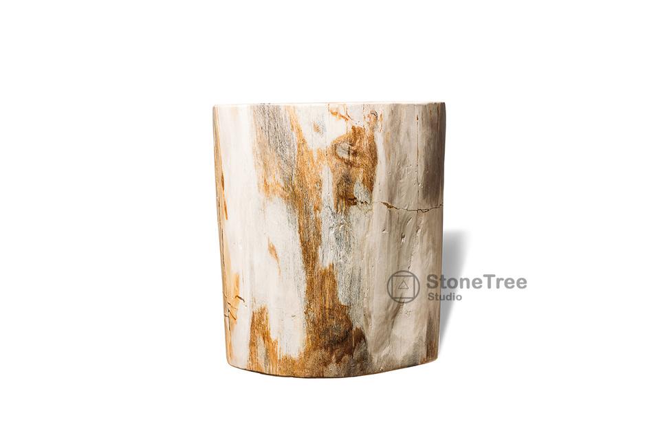 Куб из окаменелого дерева White Tiger
