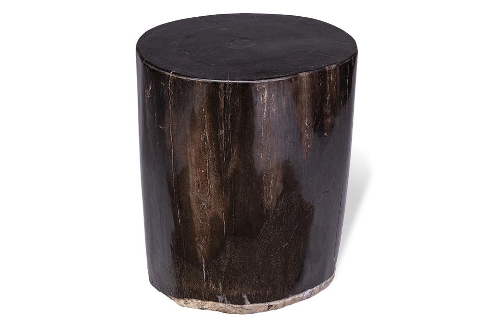 Куб из окаменелого дерева Panthera