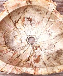 Раковина из окаменелого дерева Karacal
