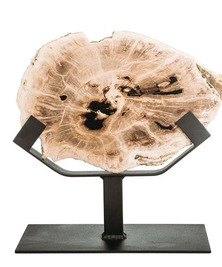 Панно из окаменелого дерева Panthera 2